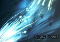 Bluyow Brushes