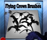 Flying Crows Brushes