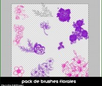 Brushes de Flores By:- CLLQ