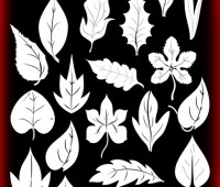 leaf Photoshop brushes