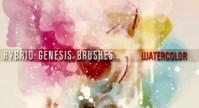 hybrid genesis watercolor brushes 2012 , 2013