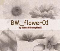 BM_flower01