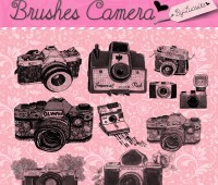 Brushes Camera by:Lucesita/CBC