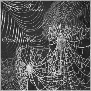 Spider Web Brushes Set 1 photoshop