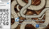 Flex tubular Pawluk Brushes