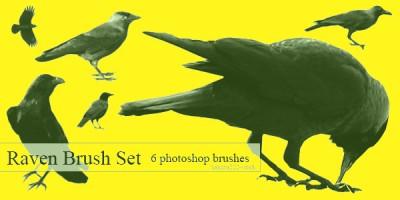 free photoshop Raven Brush Set