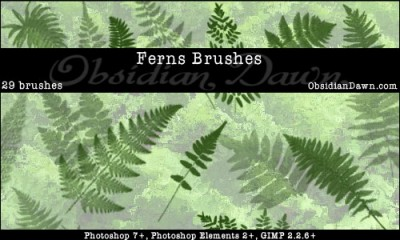 fren photoshop brushes cs7