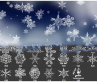 Snow Flakes Photoshop Brushes