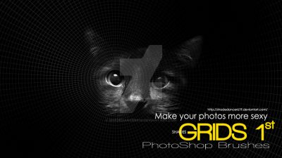 Shades Photoshop Brushes GRIDS 1st by  shadedancer619