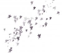 Fairy scatter brushes photoshop