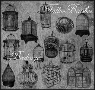 bird cage brushes photoshop