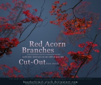 Red Acorn Free brushes