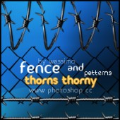 Thorns thorny and Fence